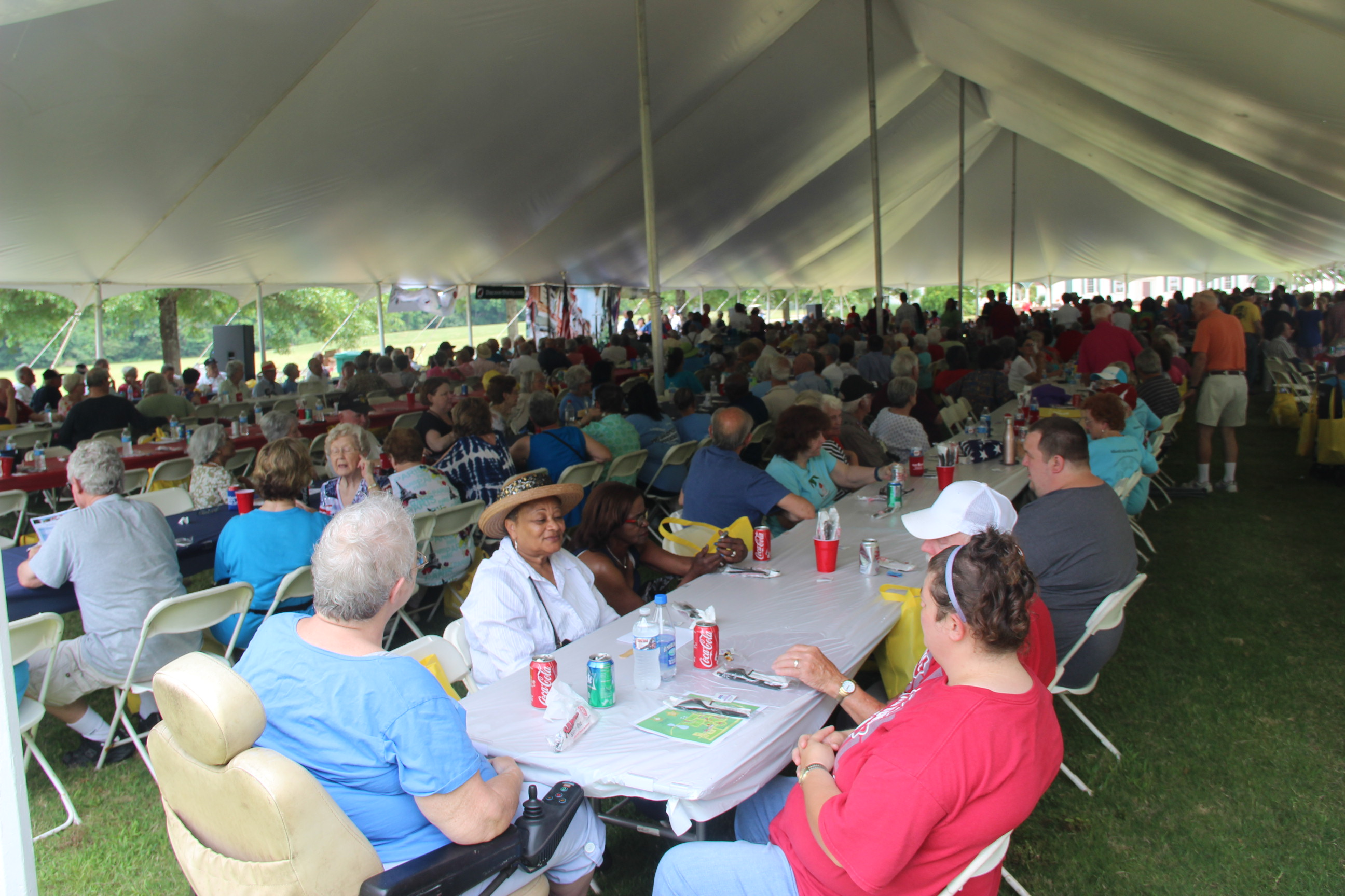 Image of people eating at the 2016 Senior Picnic