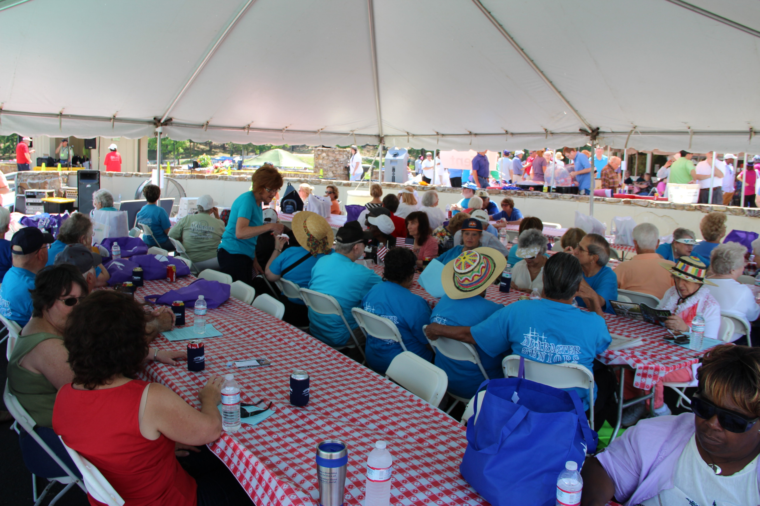 Image of attendees eating lunch at the 2014 Senior Picnic at Oak Mountain State Park