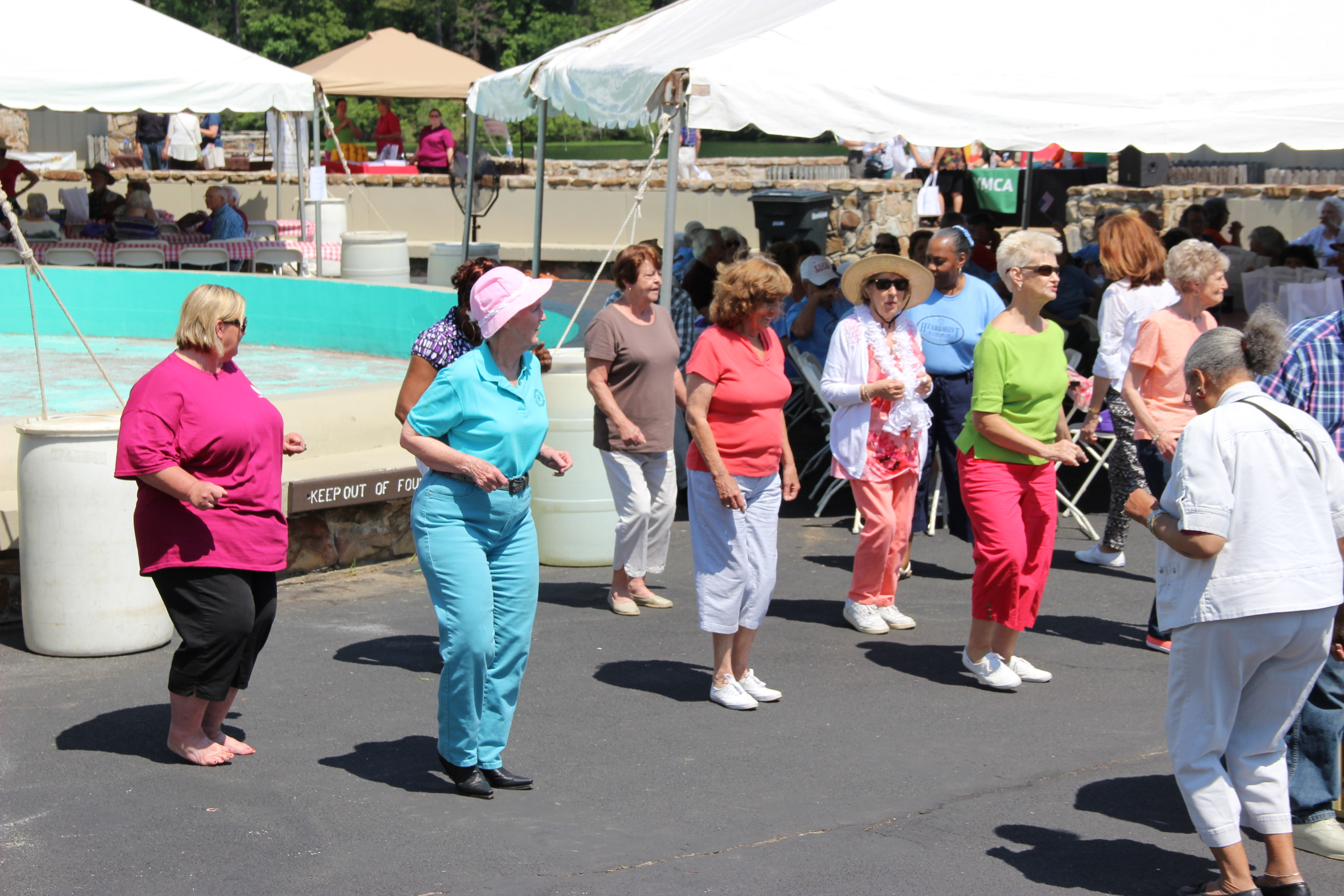 Image of line dancing at the 2014 Senior Picnic at Oak Mountain State Park